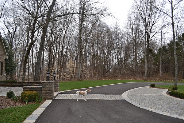 Patio_Walkway_Unique_Hardscapes_Kentucky_62